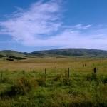 Camino Paso Arriera-5
